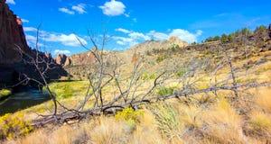 Canionsleep in Smith Rocks State Park, een populair bergbeklimmingsgebied in centraal Oregon dichtbij Terrebonne royalty-vrije stock foto's
