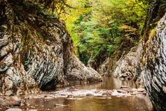 Canionstroom in het regenwoud royalty-vrije stock afbeeldingen