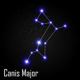 Canis Major Constellation with Beautiful Bright Stars. On the Background of Cosmic Sky Vector Illustration EPS10 Stock Images
