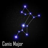 Canis Ważny gwiazdozbiór z Pięknymi Jaskrawymi gwiazdami Obrazy Stock