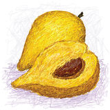 Canistel被切的果子,全部和一半 免版税库存图片