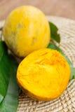 Canistel frukt Arkivfoton