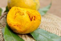Canistel frukt Fotografering för Bildbyråer