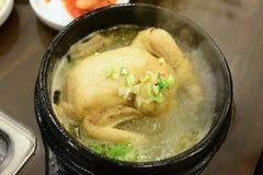 Canja de galinha fotografia de stock