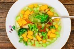 Canja de galinha com brócolis, cenouras e aipo, abóbora e Nood Fotos de Stock Royalty Free