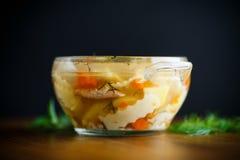 Canja de galinha com macarronetes caseiros Imagens de Stock