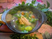 Canja de galinha com vegetais Imagens de Stock Royalty Free