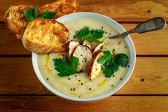 A canja de galinha cremosa com os vegetais na bacia com brinde do chiabatta, a salsa e as sementes do nigela polvilham Fotografia de Stock Royalty Free