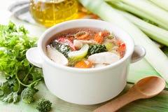 Canja de galinha quente com vegetais Fotografia de Stock Royalty Free