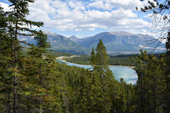 Canmore Mountain Lake. Near Grassi Lakes in the Canadian Rockies near Canmore, Alberta, Canada Royalty Free Stock Image
