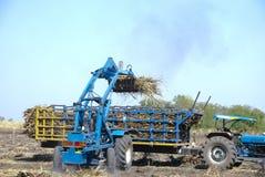 Canna dell'impilatore per l'agricoltore in Tailandia Fotografia Stock Libera da Diritti