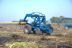 Canna dell'impilatore per l'agricoltore in Tailandia Immagini Stock