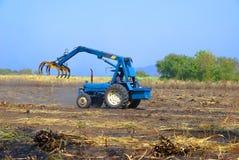 Canna dell'impilatore per l'agricoltore in Tailandia Fotografia Stock