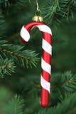 Canna di caramella che appende su un albero di Natale immagini stock