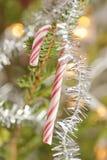 Canna di caramella in un albero di Natale Fotografia Stock