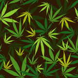 Cannabic pattern Royalty Free Stock Image