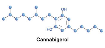 Cannabigerol is a cannabinoid Cannabis Stock Photo