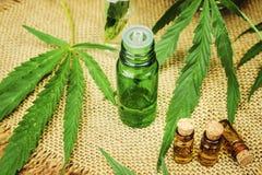 Cannabisört och sidor för behandlingbuljong, tinktur, extrakt, olja Royaltyfri Foto