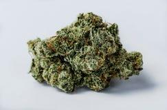 cannabis Royalty-vrije Stock Foto's