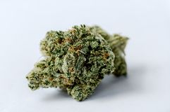 cannabis Stock Foto