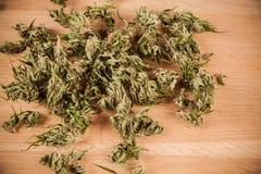 cannabis Arkivbild