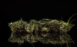 cannabis Royaltyfria Bilder
