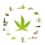 Cannabis. Royalty Free Stock Photo
