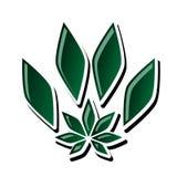 Cannabis for animals vector illustration