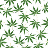 Cannabis Background. Marijuana Ganja Weed Hemp Leafs Seamless Vector Pattern. Stock Images