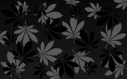 Cannabis backround vector illustration