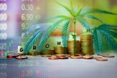Cannabis Bedrijfsmarihuanabladeren en stapel van het succesmarktprijs van de muntstukkenvoorraad op de grafiekengrafiek van de wi stock afbeelding