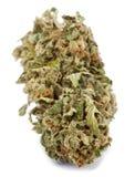 Isolated Cannabis Bud Royalty Free Stock Photos
