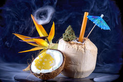 Cannabis bud and shatter in tropical setup isolated - infused ma. Detail of cannabis bud and shatter with fresh coconut and tropical flower isolated - infused Stock Image