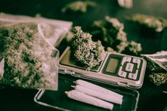 Cannabis buds Marijuana and joint On the scales on the table on table tone top view. In a moody green royalty free stock images