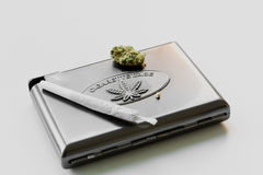 Cannabis cigarette case. Cannabis cigarette displayed on a case with a seed and bud Royalty Free Stock Photos