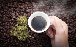 Cannabis coffee. Hand grabbing an ear cup of hot espresso as beside cannabis buds also see many roasted coffee beans on a floor Royalty Free Stock Image