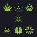 Cannabis come collezione Fotografia Stock Libera da Diritti