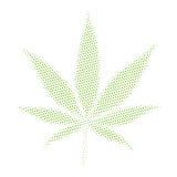 Cannabis 420 della marijuana dell'erbaccia Fotografia Stock
