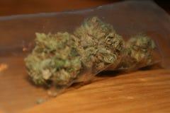Cannabis em um Baggie Foto de Stock