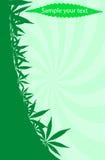 Cannabis frame Royalty Free Stock Photos