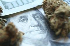 Cannabis gagnar med hundratals & Bud High Quality arkivbilder