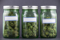 Cannabis glass jars over grey background - medical marijuana dis stock image