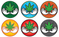 Cannabis green textured leaf icon  illustration Stock Image