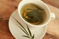 Cannabis hemp herb hot tea white cup Stock Images