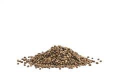 Cannabis Hemp seeds close up macro shot isolated on white backgr Royalty Free Stock Photo