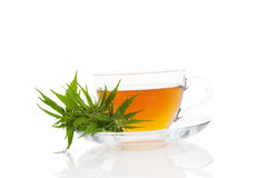 Cannabis herbal tea. Cannabis-Infused Tea in cup with cannabis plant on white background. Marijuana herbal tea. Medical marijuana Stock Images