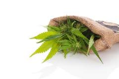 Cannabis i säckvävpåse Arkivbilder