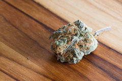 Cannabis Indica Bud (for medicinal purposes) Royalty Free Stock Photography