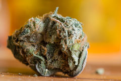Cannabis Indica Knop (voor geneeskrachtige doeleinden) royalty-vrije stock foto