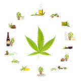 Cannabis. Cannabis and its usage. Marijuana leaf and marijuana products isolated on white background. Cosmetics, hemp milk, hemp oil, cookies, brownies and Royalty Free Stock Photo
